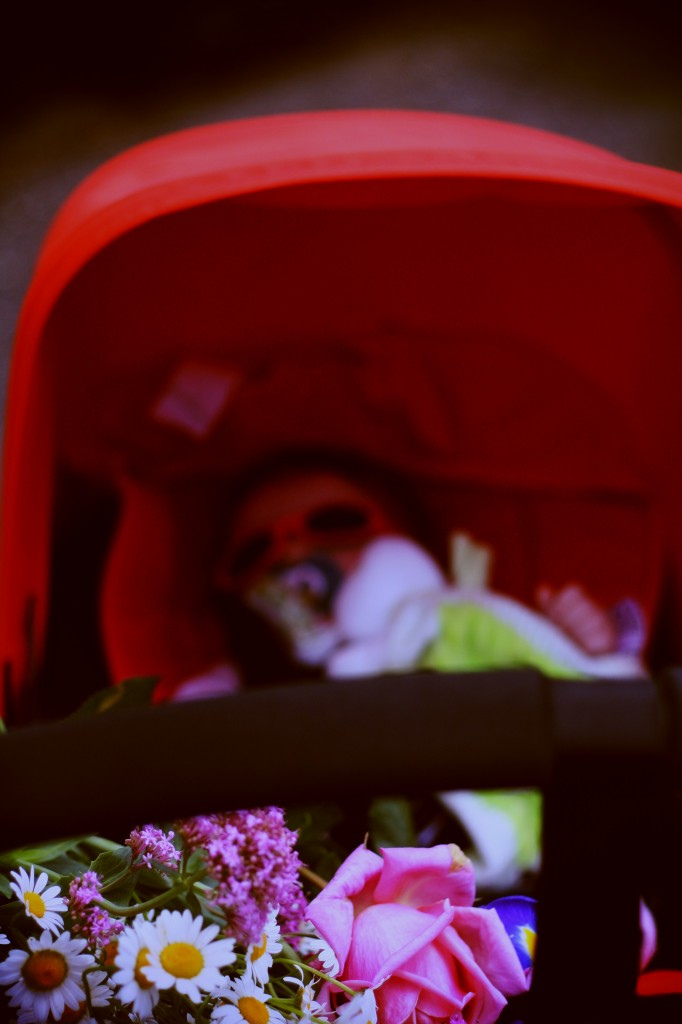 test bugaboo cameleon 3 blog famille avis