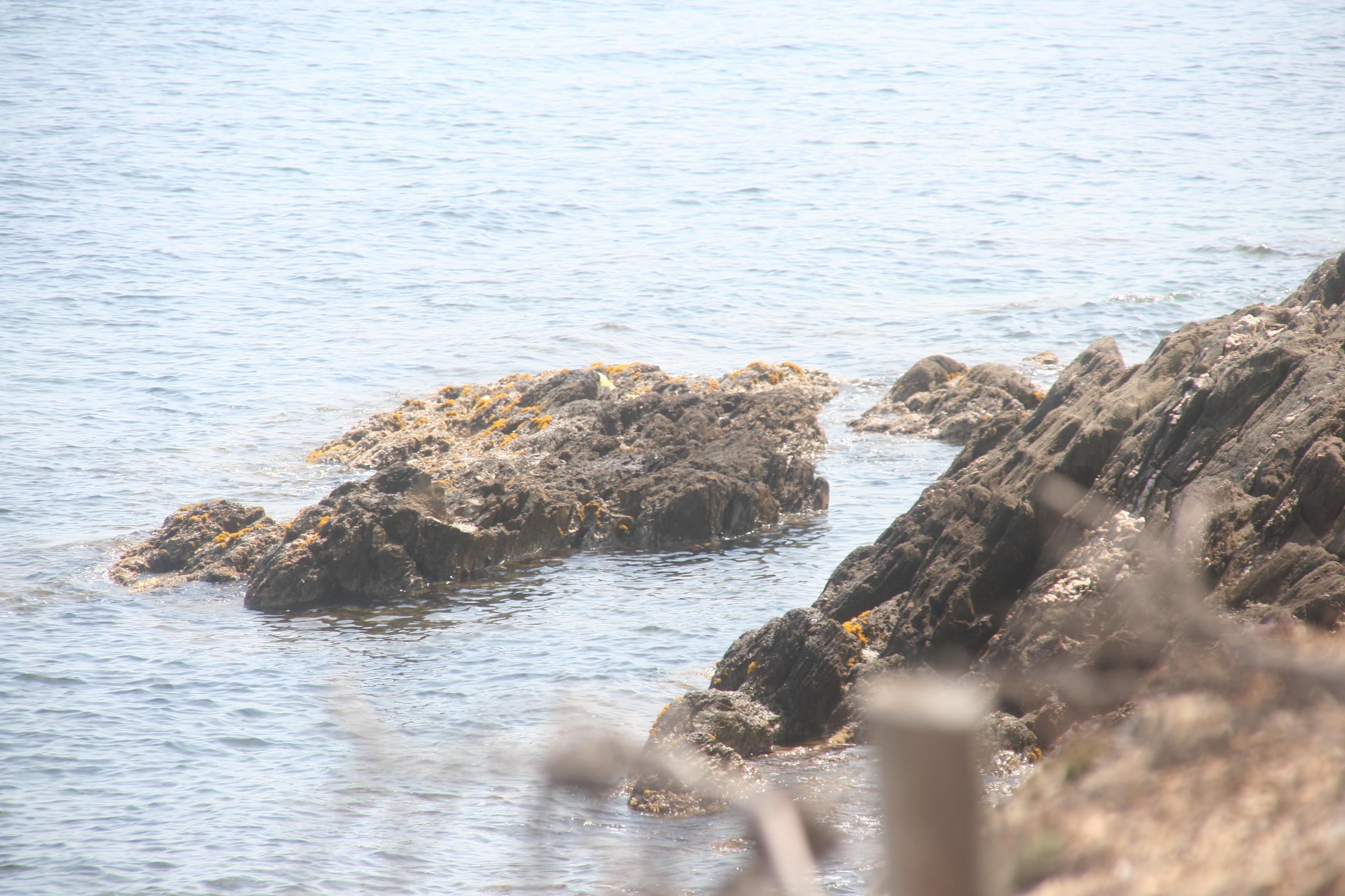 voyage-iledeporquerolles-blog-poquerolles-séjours